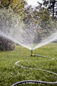 premium su hortumları nelerdir